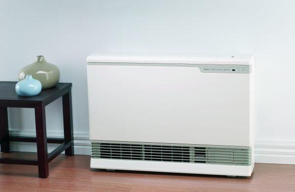 Rinnai Energysaver 1005FT