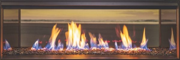 Rinnai LS 1000 Gas Fire
